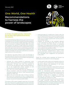Appendix – One World, One Health: Recommendations to harness the power of landscapes