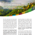 Forest Landscape Restoration – Pathways to Achieving the SDGs
