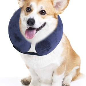 Inflatable Recovery Collar for Dogs and Cats,