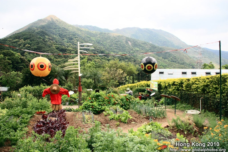 Hong Kong Kadoorie Farm Photo Gallery