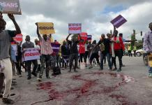 Video Of Peaceful EndSARS Protesters Teargassed By Policemen In Abuja
