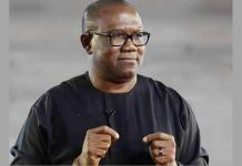 Anambra State Judicial Panel of Inquiry on Police Brutality To Invite Ex Governor Peter Obi