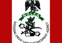 National Drug Law Enforcement Agency NDLEA Arrests 2 Suspects Okwubunne Chidiebere Simeon and Aniakor Uchenna James With 16.65kg Of Cocaine At Lagos Airport