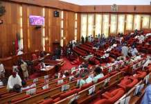 Senate Says We Are Not Aware Of CBN Freezing #ENDSARS Leaders' Bank Accounts