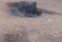 Photos of a young man set ablaze in Benue by mob for stealing 2000 naira