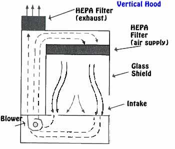 Aseptic technique: key points, laminar flow hood