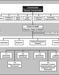 Typical organizational structure of  joint staff also fm chapter integration with supported organizations rh globalsecurity