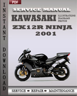 Kawasaki ZX12R Ninja 2001 manual