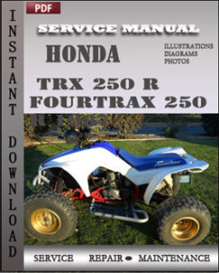 Honda TRX 250 R Fourtrax 250 R 1987 global
