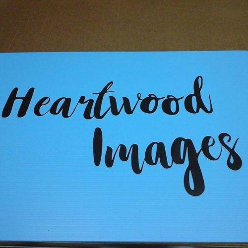 Laser cut lettering