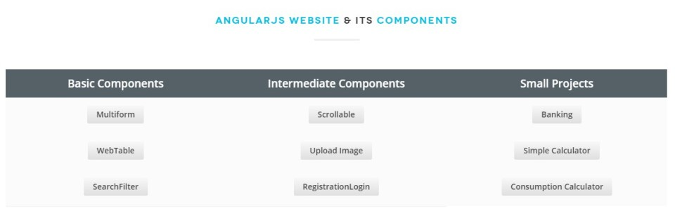 AngularJS Projects