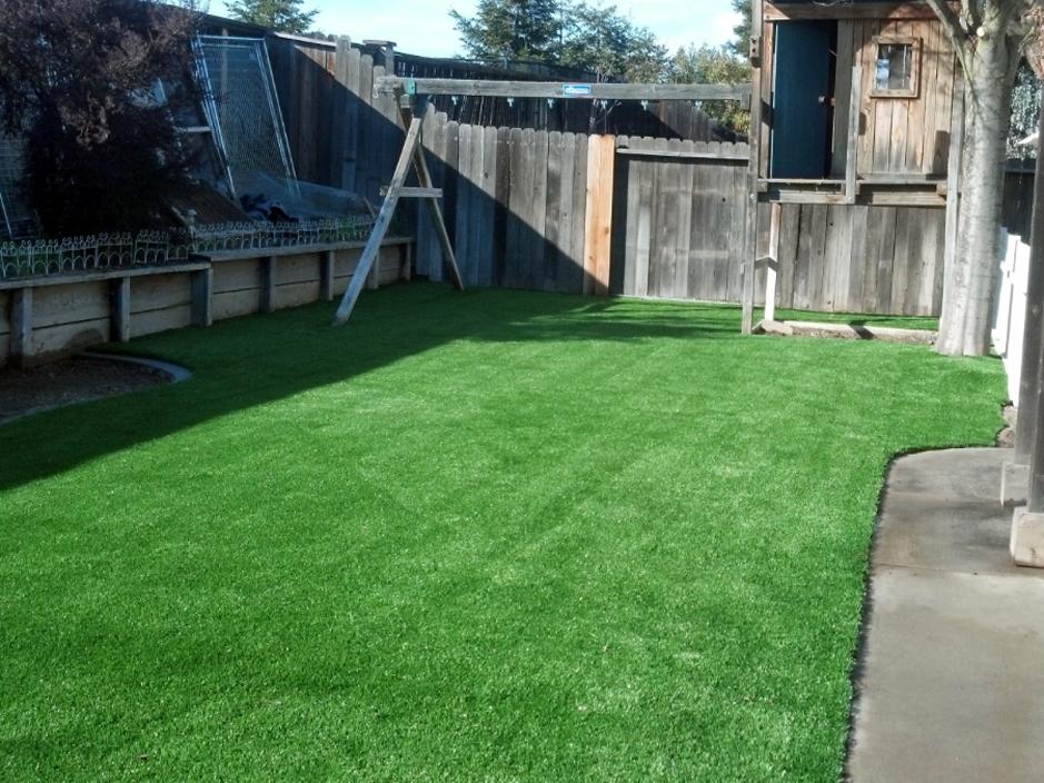 Best Synthetic Grass Richmond Virginia City Of Richmond
