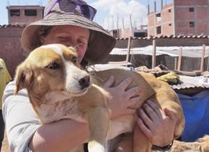 Peru dog rescue shelter
