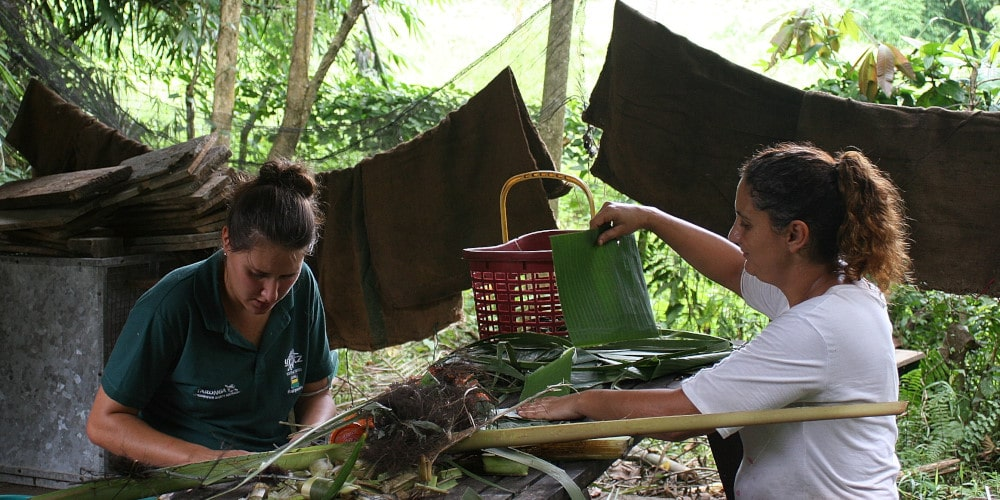 Volunteers at Wildlife Project