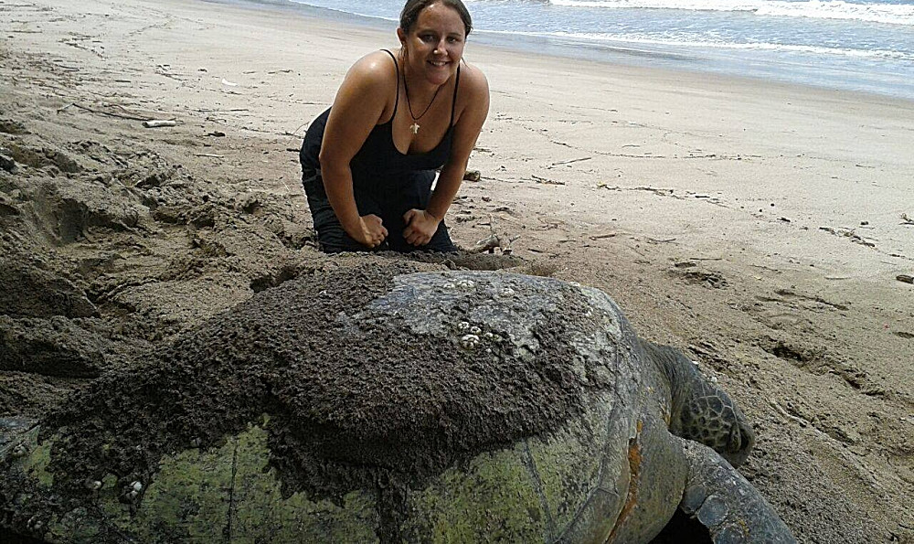 Volunteer at the Costa Rica Sea Turtle Sanctuary