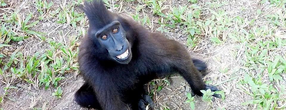 Indonesia Wildlife Sanctuary smile!