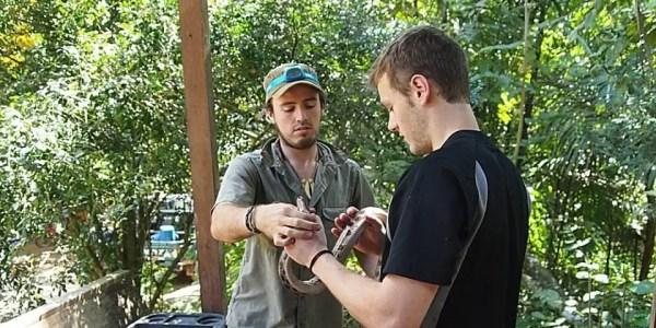 Peru Amazon Rainforest Project