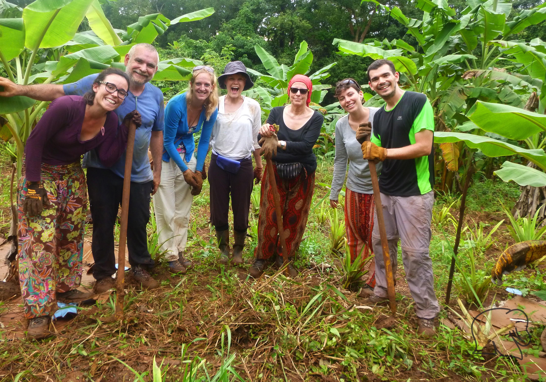 Volunteers working at the Cambodia elephant sanctuary