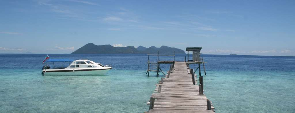 Jetty at Borneo Marine Conservation Project