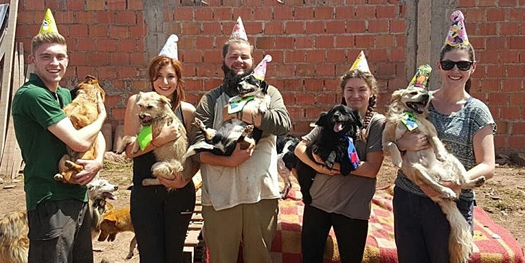 Party time for volunteers at the Peru Dog Rescue Project