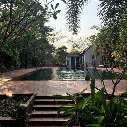 Volunteer Pool at the Cambodia Bear Rescue Project
