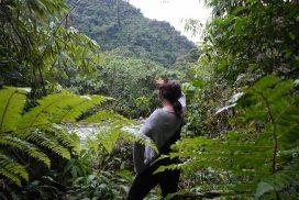 Amazon Conservation Volunteer