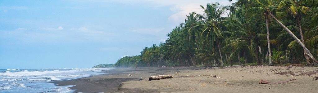 Beautiful Beach to Volunteer with Turtles