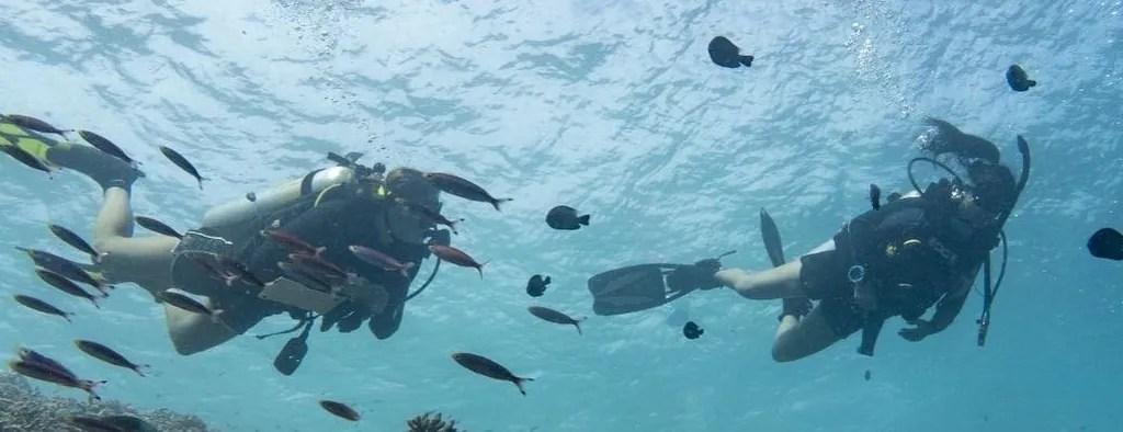 Borneo Marine