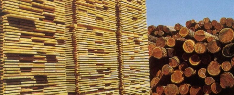 U.S. exports of softwood lumber to china has dramatically decreased, while the demand from Sweden and finland has drastically increased. China's increasing demand for high-value, higher quality softwood explains the eyebrow-raising growth in China-bound softwood lumber exports from Sweden and Finland.