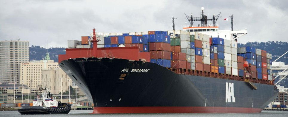 UK Ocean Carrier Kestrel Starts Offering Capacity Online - Global