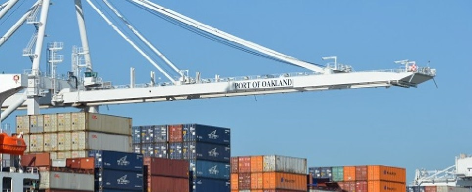 The Port of Oakland handled more cargo in July; both import and export cargo volumes increased.