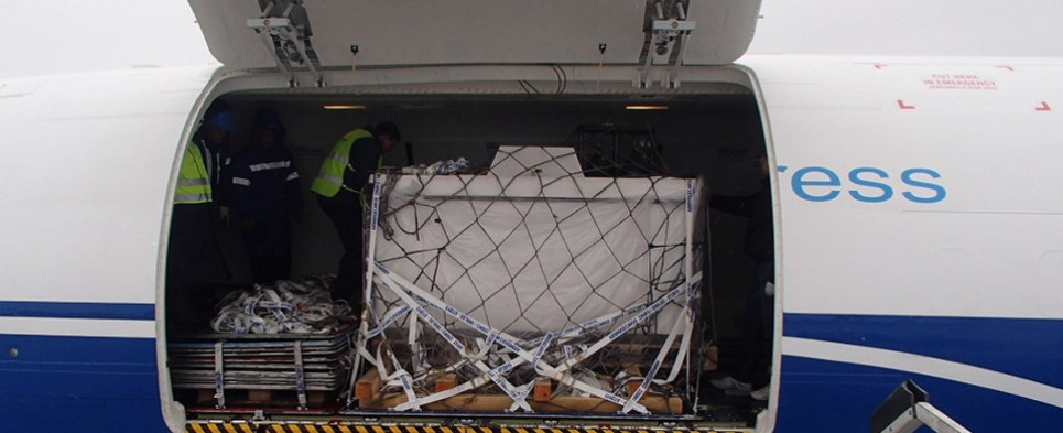 Unusual cargo of fish delivered by air cargo shipment in a logistics and supply chain feat.