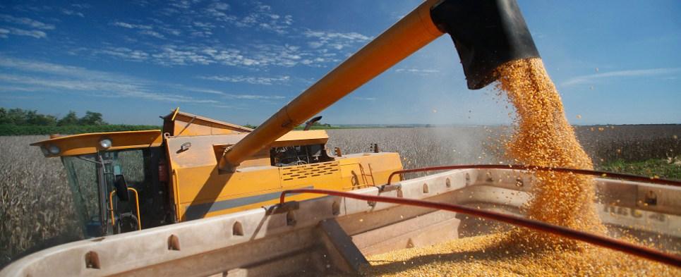 Five of top markets for U.S. exports of corn are free trade agreement partners.