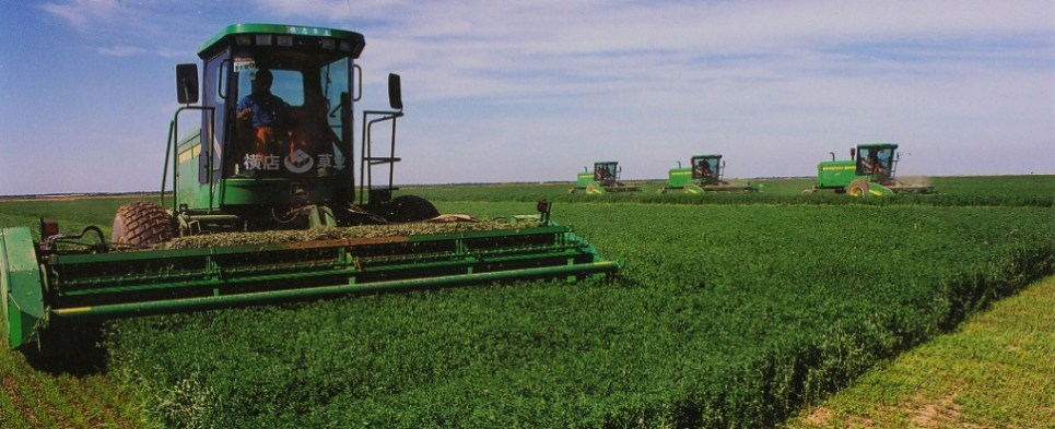 China has been asked to defend its agricultural support policies before the World Trade Organization on the grounds that the measures restrict shipments of import cargo into the country.