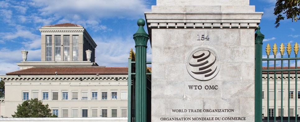 WTO dispute resolution is designed to ensure that shipments of export cargo and shipments of import cargo in international trade are handled fairly.