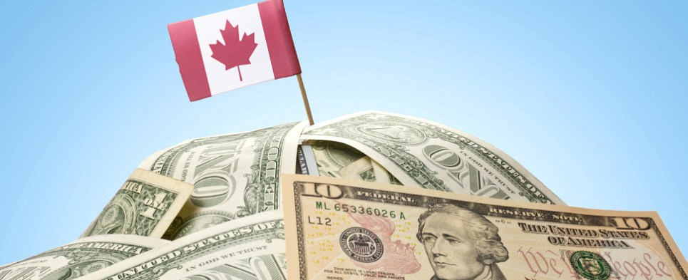 Canadian companies expect to be shipping more export cargo and import cargo in international trade.
