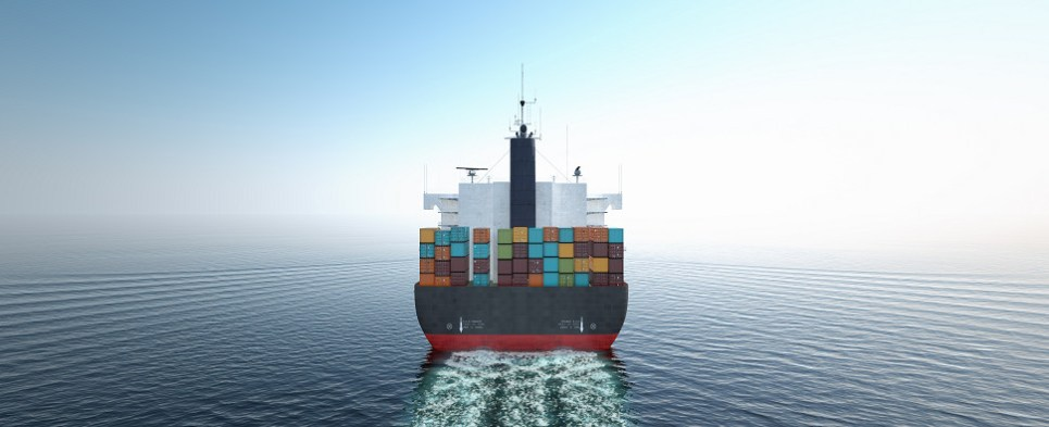Software automates processes relating to shipments of export cargo and import cargo in international trade.