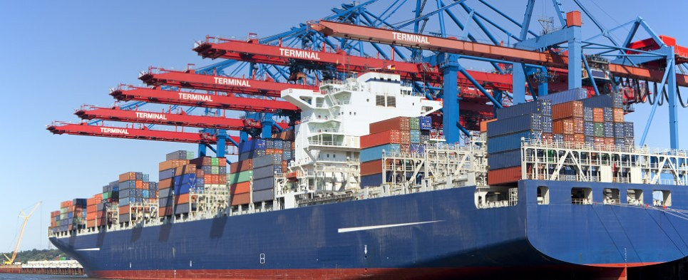 Container carriers carried more shipments of export cargo and import cargo in international trade during the first half of 2016.
