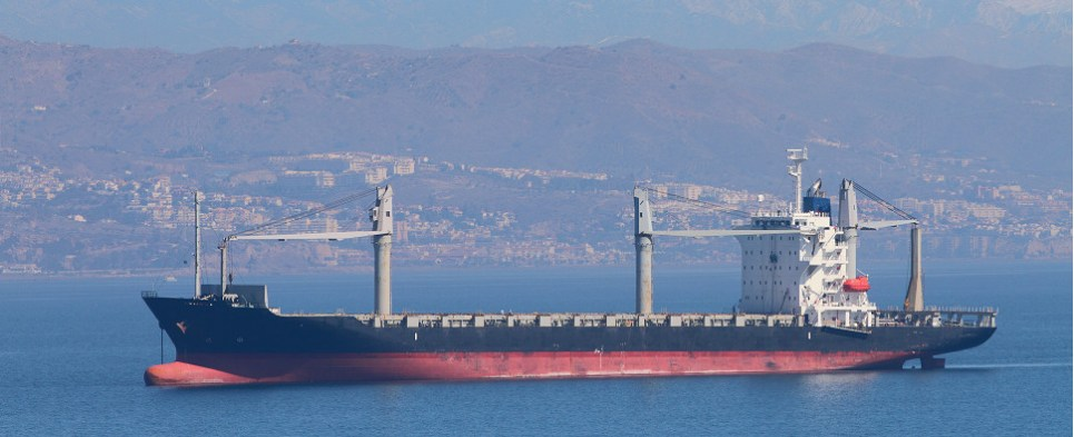 Ocean shipping carriers are idling vessels that carry shipments of export cargo and import cargo in international trade.
