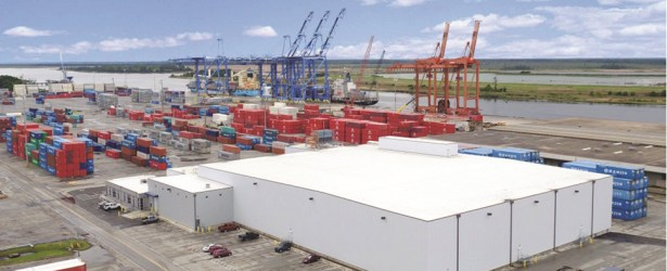 Opening of new facility will allow North Carolina port to handle cold shipments of export cargo and import cargo in international trade.