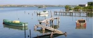 Florida Ports Abandon Cuba Deals After Governor's Threat