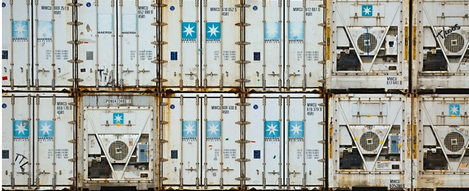 IBM and Maersk introduce blockchain solution for shipments of export cargo and import cargo in international trade.