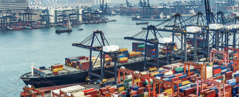 Container shipping companies are carrying more shipments of export cargo and import cargo in international trade.