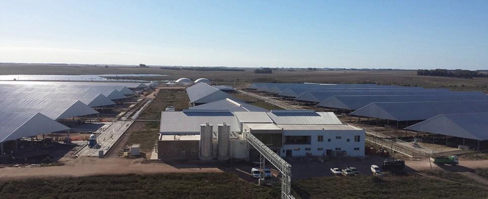 Uruguay p[lant generates shipments of export cargo and import cargo in international trade.