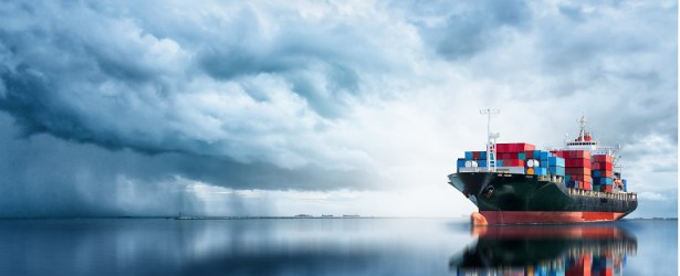 Software manages ocean shipments of export cargo and import cargo in international trade.