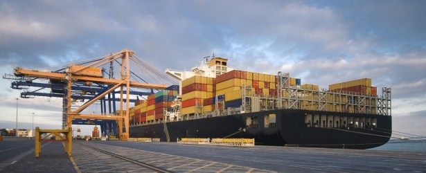 Asian countries have more shipments of export cargo and import cargo in international trade with Africa.