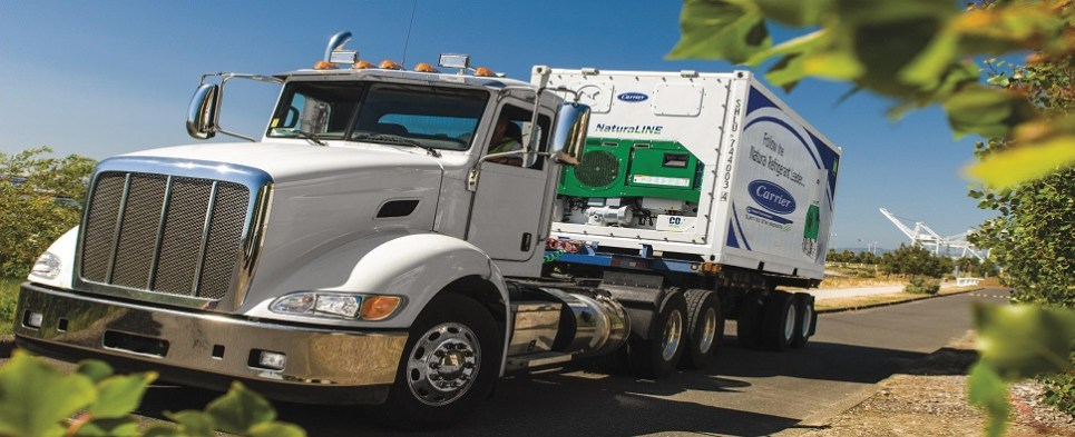 New reefers will carry temperature-controlled ocean shipments of export cargo and import cargo in international trade.