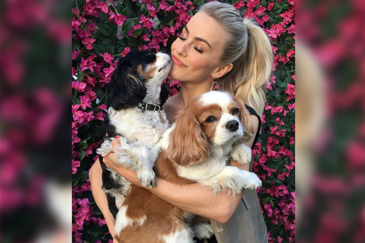 Julianne Hough mourns the deaths of her canines: 'I enjoy you forever' – Webpage Six