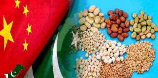 Pak-China soybean cooperation