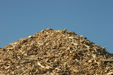Wood-fired ethanol plant to open in Alabama
